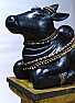 TA06002: INDIAN WOOD NANDI BULL FIGURE